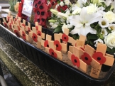 Remembrance Crosses, each bearing the name of one of those from Holyhead who perished.